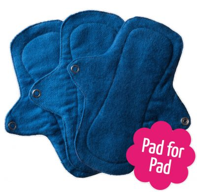 Eco Femme Blue 100% Organic Cotton Pantyliners with PUL (Set of 3)