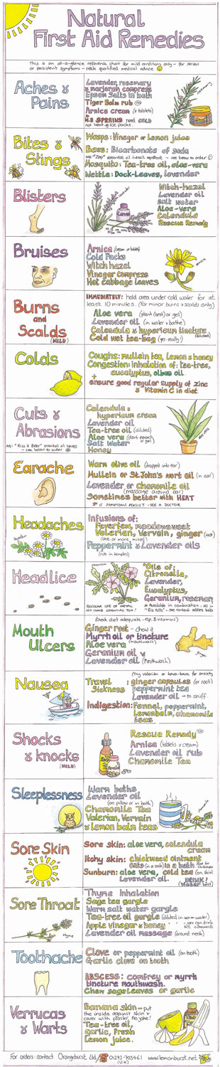 Liz Cook Natural First Aid Remedies Chart